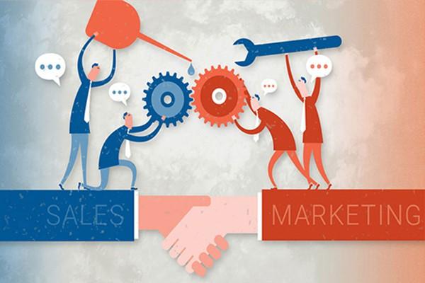 Phân biệt sales và marketing