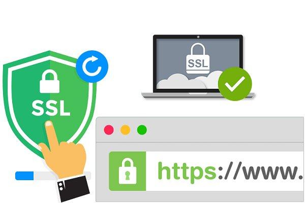 phân loại ssl